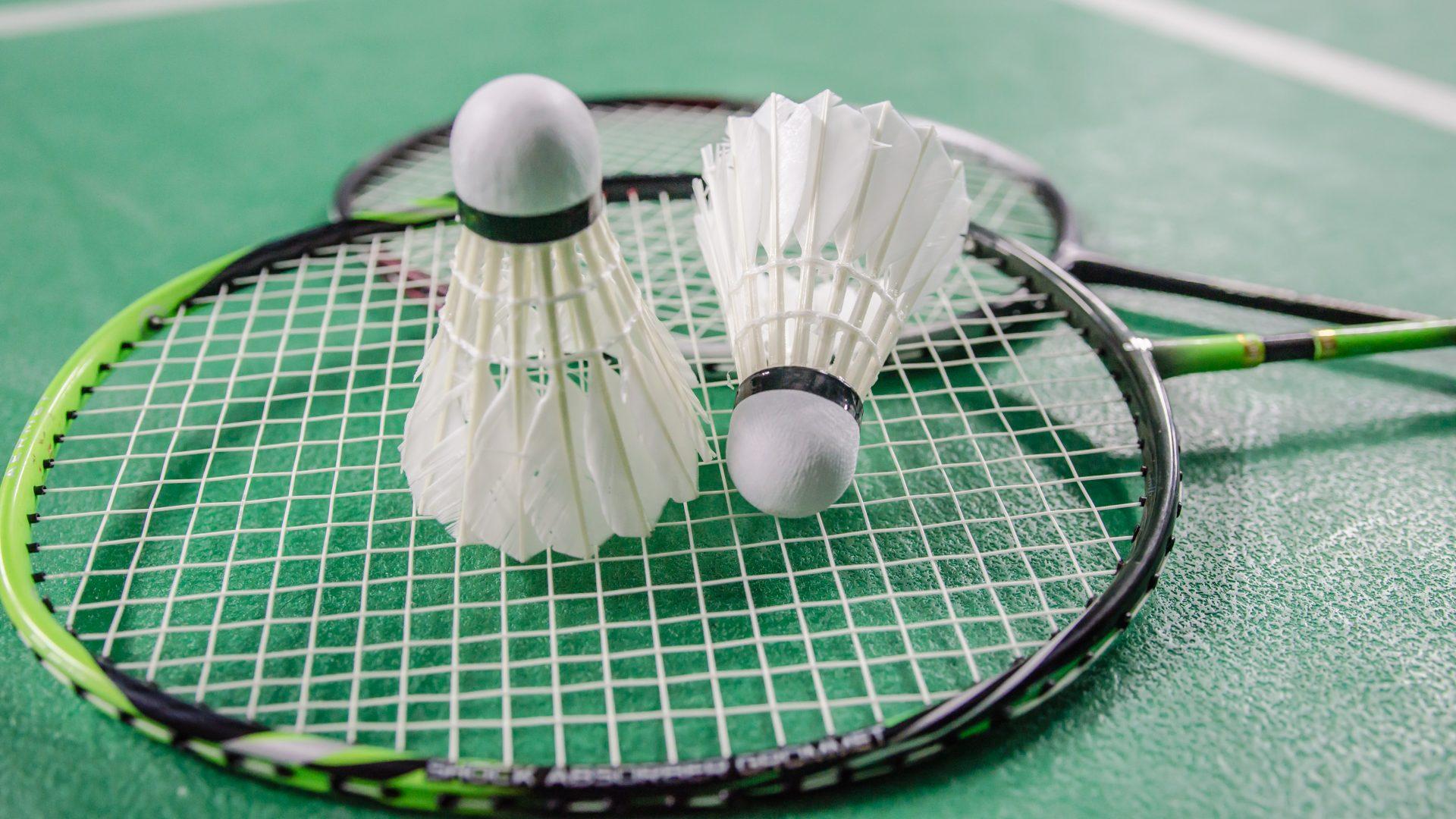 Course Image E28EP5/E48EP5/E68EP5 - Badminton